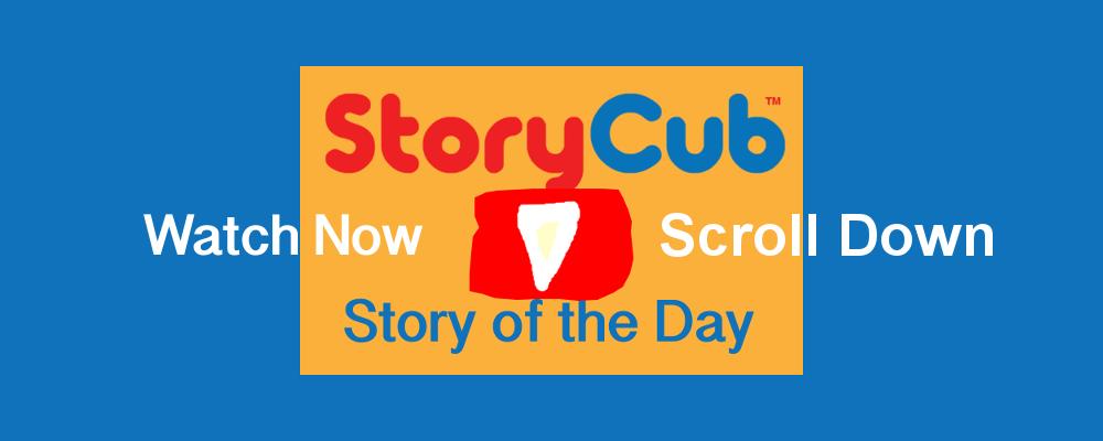 Video Storybook